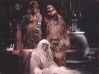 "Not to be confused with ""Life Day,"" the wookie holiday from the Star Wars Christmas Special"